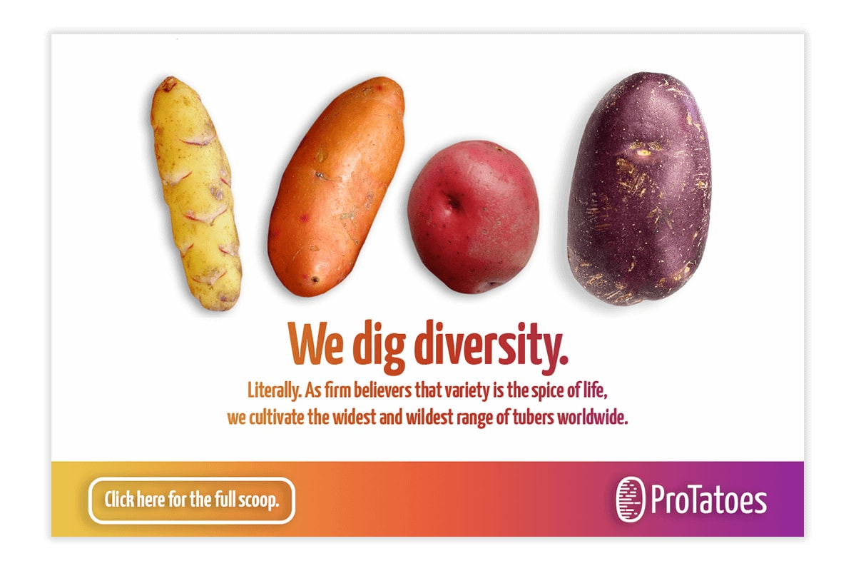 Another mock advertisement for ProTatoes.